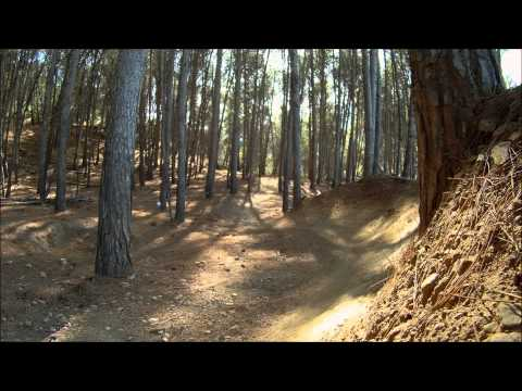 Downhill Malaga (Badfish Surfwear friends).