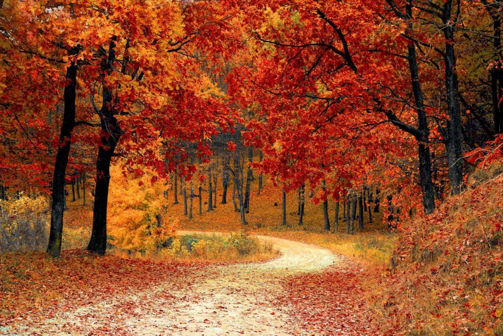 10 consigli mtb autunno