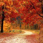 MTB sostenibile: 10 consigli