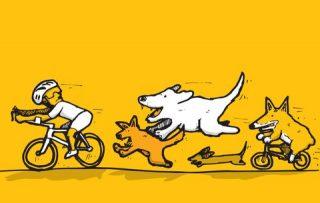non scappare dai cani