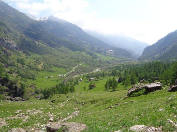 Alpe Veglia MTB