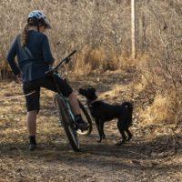 MTB col cane: come addestrarlo a seguirti